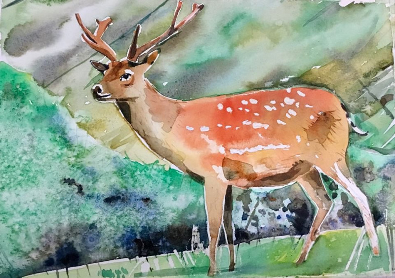Festive Watercolour Workshop - Various Dates